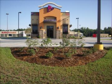 Commercial Landscaping for Taco Bell in Columbia, MS